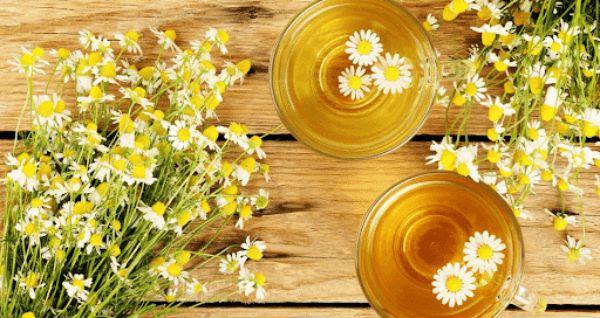 trà hoa cúc cải thiện đau họng