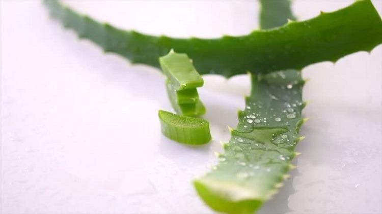 trị đau răng tại nhà bằng gel nha đam