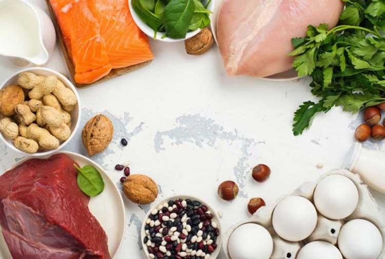 thực phẩm giàu protein tốt cho người bệnh sốt xuất huyết