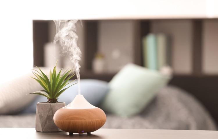 Tinh dầu tràm, oải hương, long não,… rất tốt trong việc phòng và điều trị cảm cúm