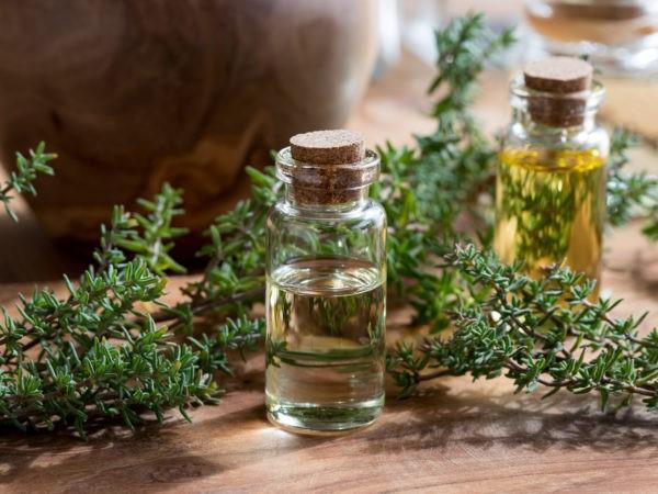 tinh dầu cỏ xạ hương trị đau răng