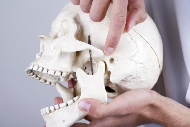 Rối loạn khớp thái dương hàm gây đau cơ hàm
