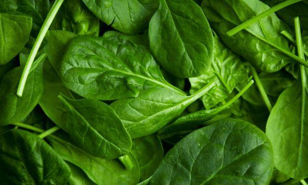 Thêm rau bina vào bữa ăn trong thời gian bị cảm cúm sẽ giúp cơ thể bổ sung thêm vitamin