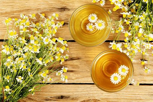 trà hoa cúc giúp cải thiện cơn đau họng của bản thân