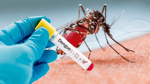 sốt xuất huyết nguy hiểm đến tính mạng